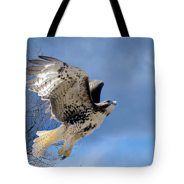 Flight Of The Red Tail Tote Bag by Bill Wakeley