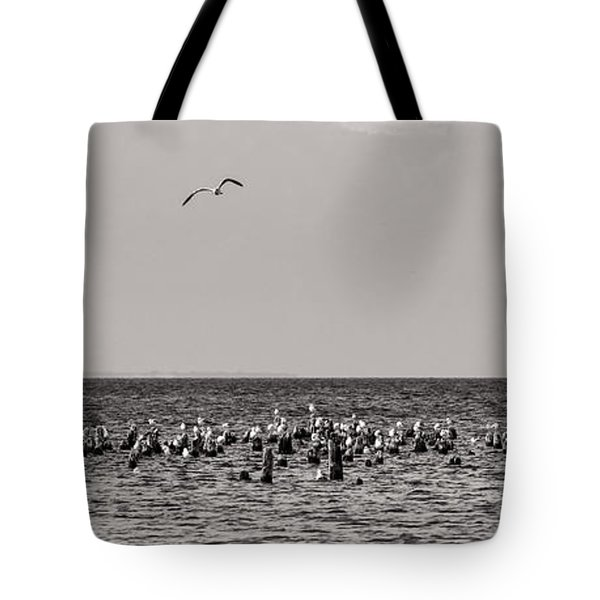 Flock Of Seagulls In Black And White Tote Bag by Sebastian Musial