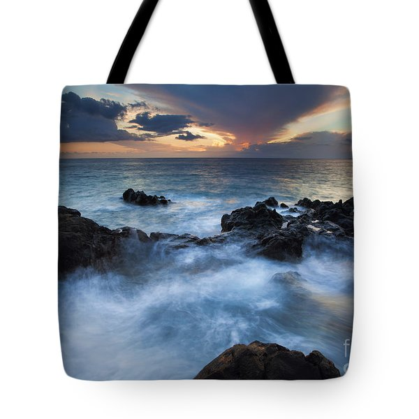 Flooded Tote Bag by Mike  Dawson