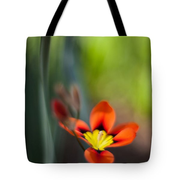 Flora Counterpoint Tote Bag by Mike Reid