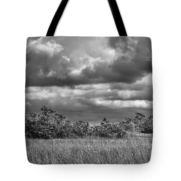 Florida Everglades 0184bw Tote Bag by Rudy Umans