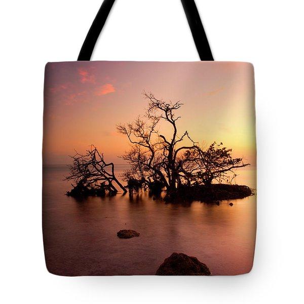 Florida Keys Sunset Tote Bag by Mike  Dawson
