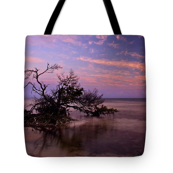 Florida Mangrove Sunset Tote Bag by Mike  Dawson