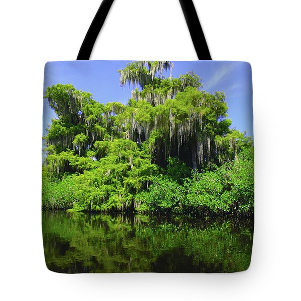 Florida Swamps Tote Bag by Carey Chen