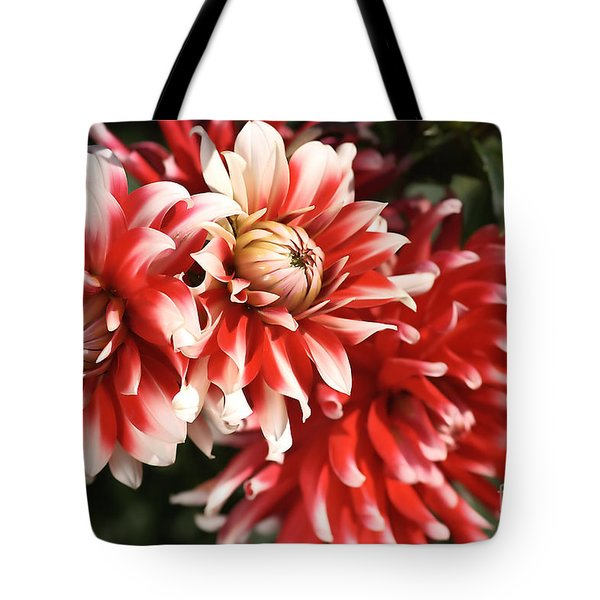 Flower-dahlia-red-white-trio Tote Bag by Joy Watson