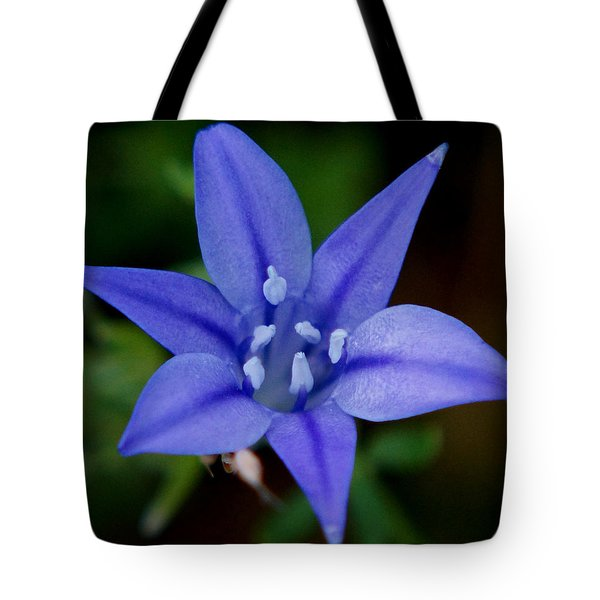 Flower From Paradise Lost Tote Bag by Kim Pate