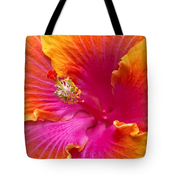 Flower - Hibiscus Rosa-sinesis - Chinese Hibiscus - Appreciation Tote Bag by Mike Savad