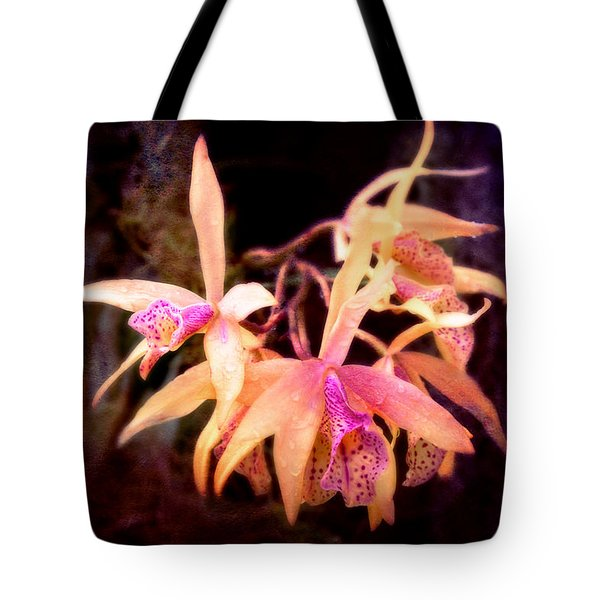 Flower - Orchid - Laelia - Midnight Passion Tote Bag by Mike Savad