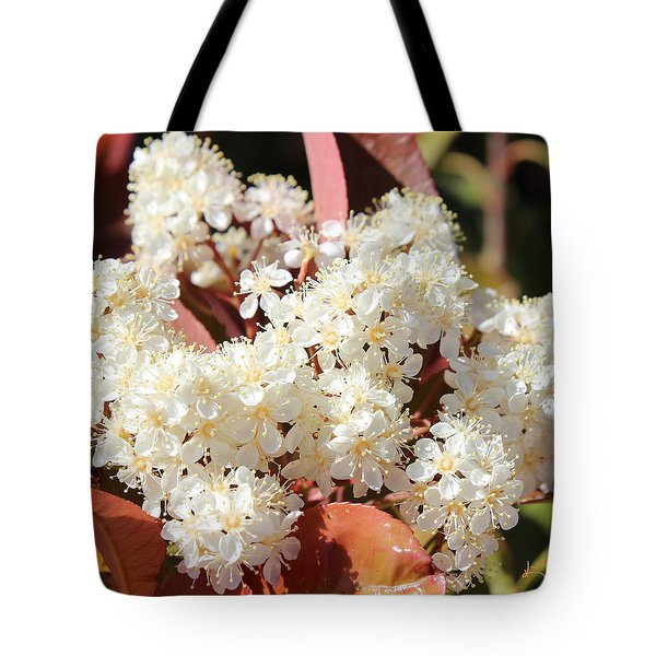 Flower Puffs Tote Bag by Kume Bryant