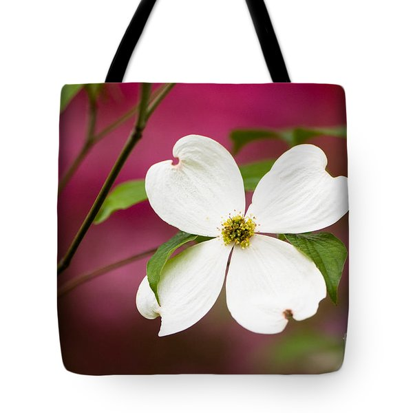 Flowering Dogwood Blossoms Tote Bag by Oscar Gutierrez