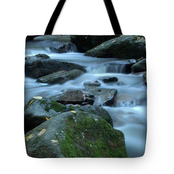 Flowing Spirit Tote Bag by Karol Livote
