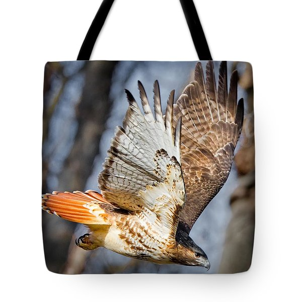 Fly Away Tote Bag by Bill  Wakeley