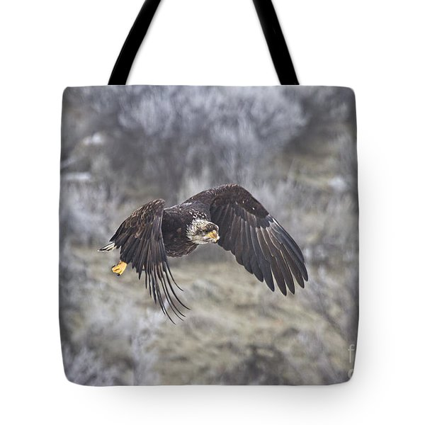 Flying Low Tote Bag by Mike  Dawson