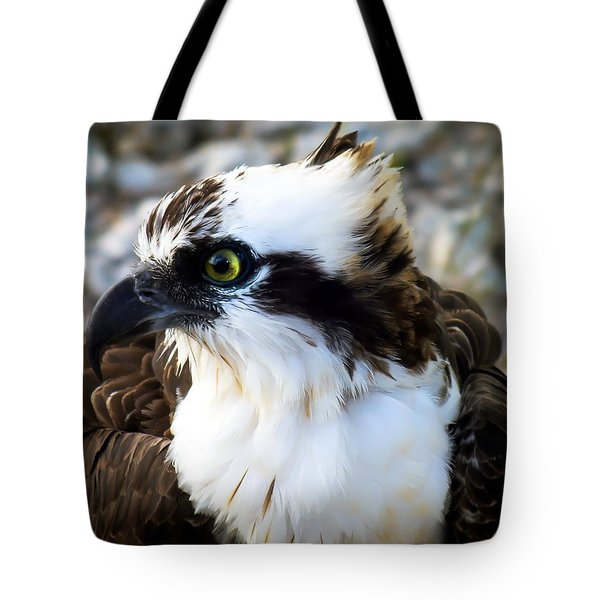 Focused Tote Bag by Karen Wiles