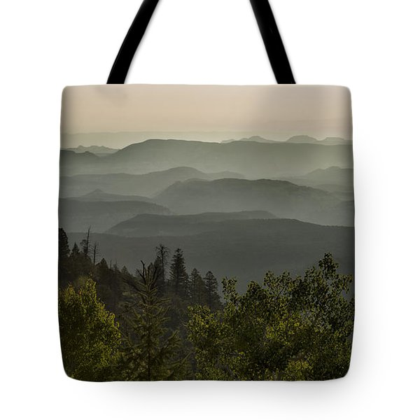 Foggy Morning Over Waterpocket Fold Tote Bag by Sandra Bronstein