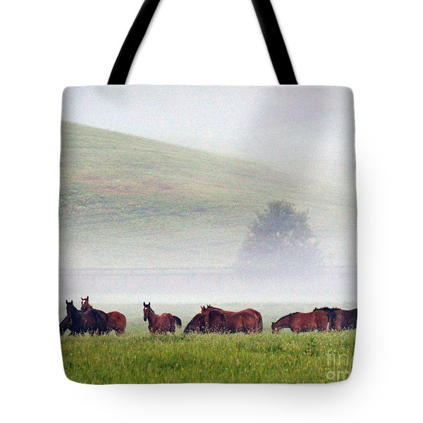 Foggy Morning Tote Bag by Roger Potts