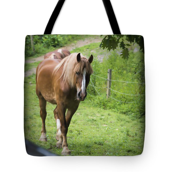 Follow Me Tote Bag by Dan Friend