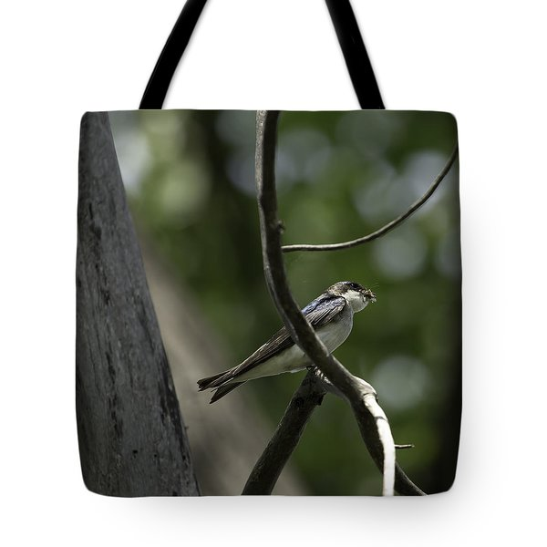 Food For The Young Tote Bag by Thomas Young