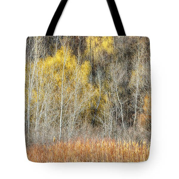 Forest In Late Fall At Scarborough Bluffs Tote Bag by Elena Elisseeva