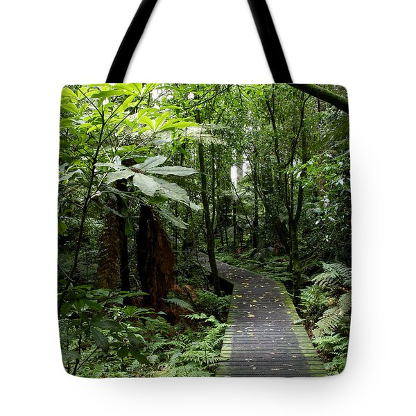 Forest Path Tote Bag by Les Cunliffe