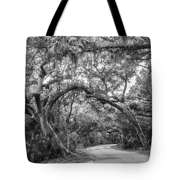 Fort Clinch Live Oaks Tote Bag by Dawna  Moore Photography