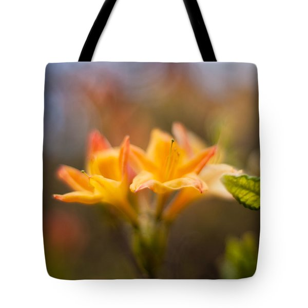 Fountain Of Gold Tote Bag by Mike Reid