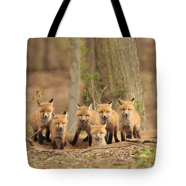 Fox Family Portrait Tote Bag by Everet Regal