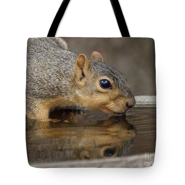 Fox Squirrel Tote Bag by Lori Tordsen
