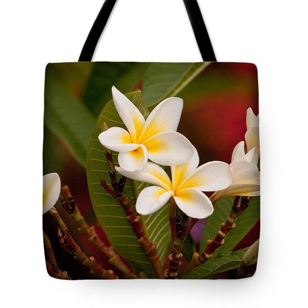 Frangipani - Plumeria Tote Bag by Michelle Wrighton