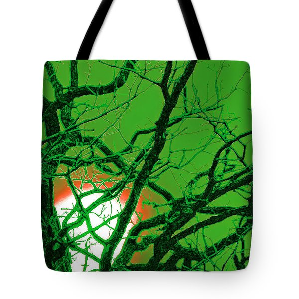 Frankenstein Moon Tote Bag by First Star Art
