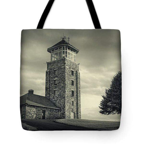Free The Dream Tote Bag by Evelina Kremsdorf