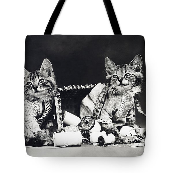 Frees Kittens, C1915 Tote Bag by Granger