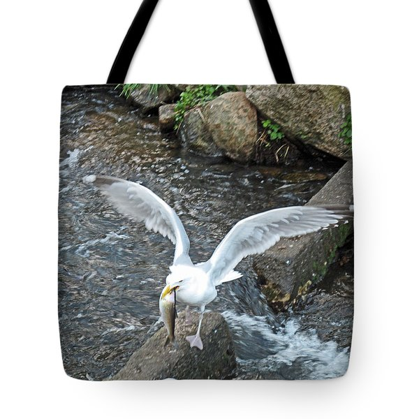 Fresh Catch Of The Day Tote Bag by Barbara McDevitt