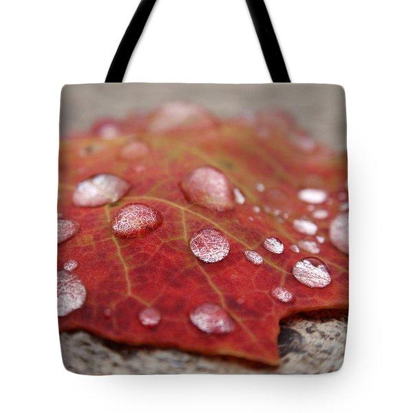 Fresh Drops Tote Bag by Christina Rollo