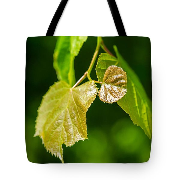 Fresh - Featured 3 Tote Bag by Alexander Senin