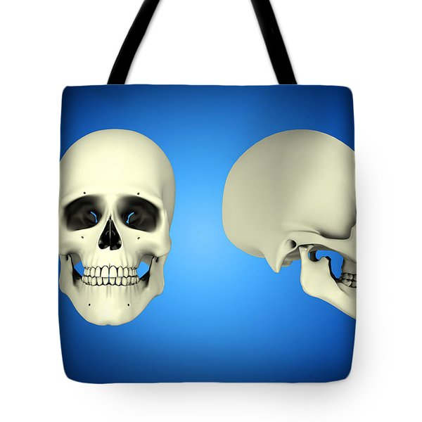 Front View And Side View Of Human Skull Tote Bag by Stocktrek Images