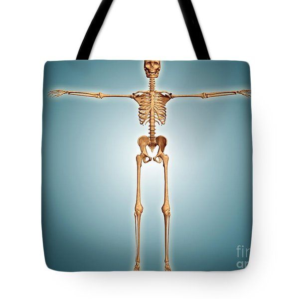 Front View Of Human Skeletal System Tote Bag by Stocktrek Images