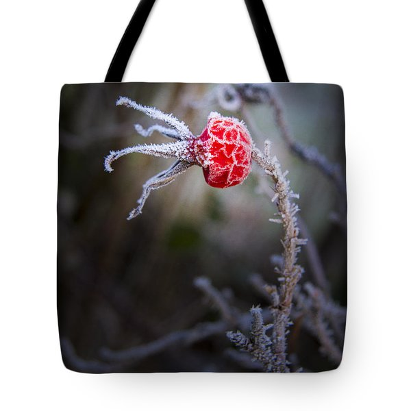 Frosted Tote Bag by Jean Noren
