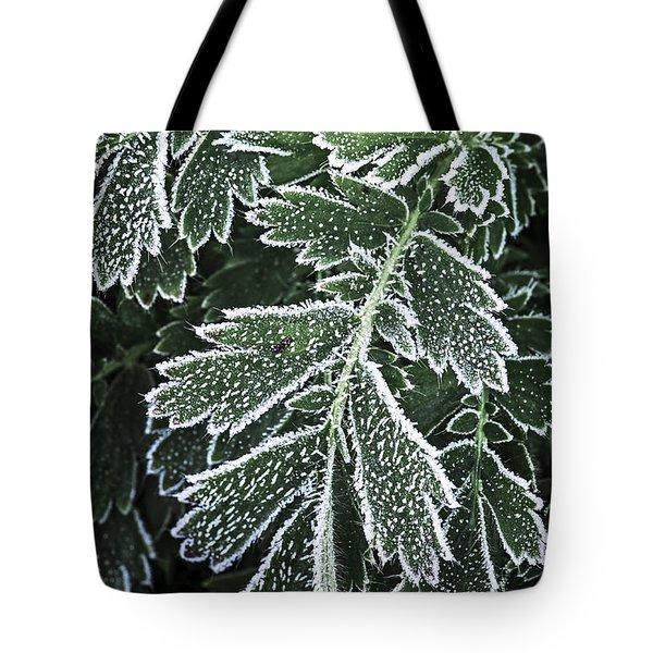 Frosty leaves macro Tote Bag by Elena Elisseeva