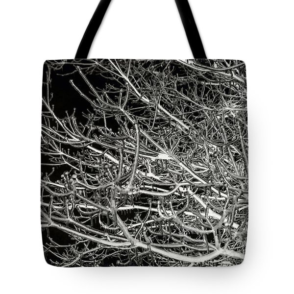 Frozen Tote Bag by Arlene Carmel