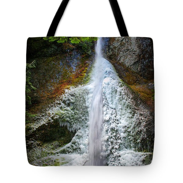 Frozen Marymere Falls Tote Bag by Inge Johnsson