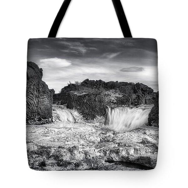 Frozen Splendor Tote Bag by Evelina Kremsdorf