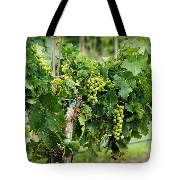 Fruit On The Vine Tote Bag by Lucinda Walter
