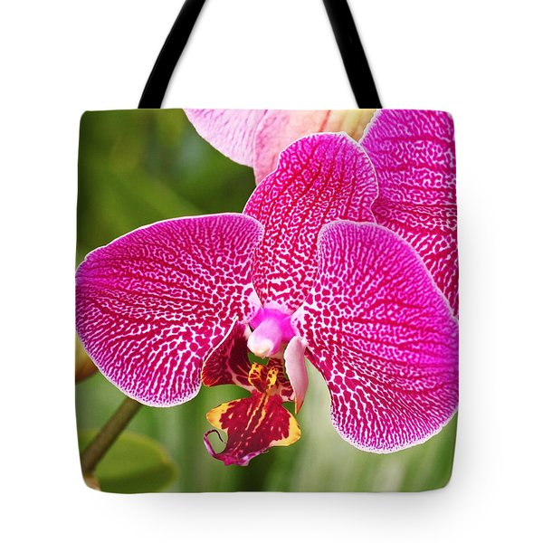 Fuchsia Moth Orchid Tote Bag by Rona Black