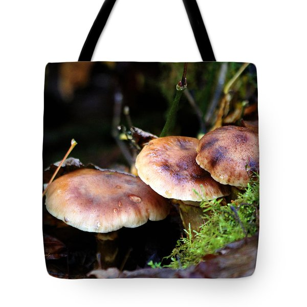 Fungus Among Us II Tote Bag by Jeanette C Landstrom