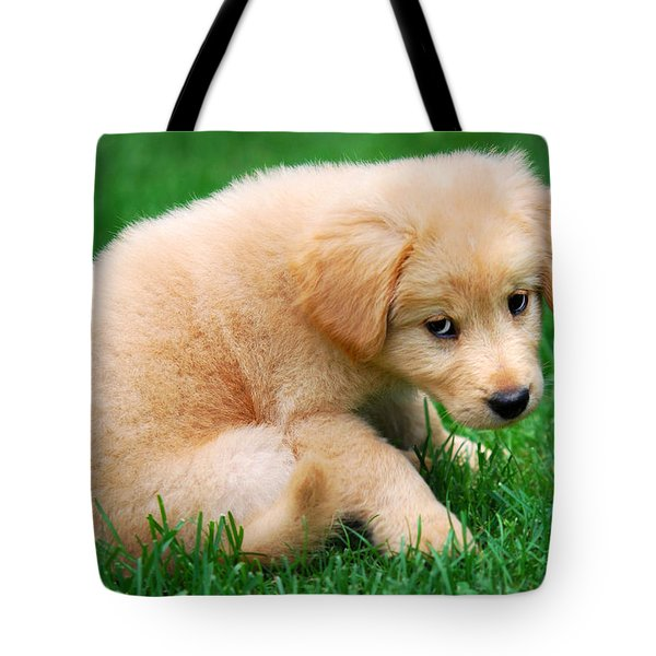 Fuzzy Golden Puppy Tote Bag by Christina Rollo