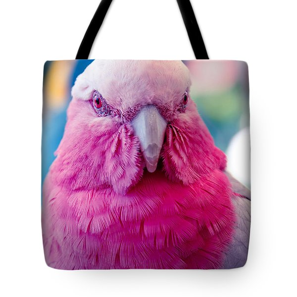 Galah - Eolophus Roseicapilla - Pink And Grey - Roseate Cockatoo Maui Hawaii Tote Bag by Sharon Mau