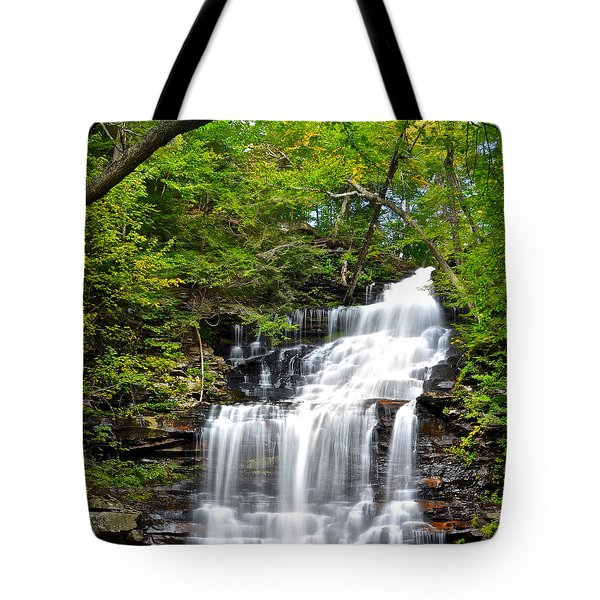 Ganoga Falls Ricketts Glen Tote Bag by Frozen in Time Fine Art Photography