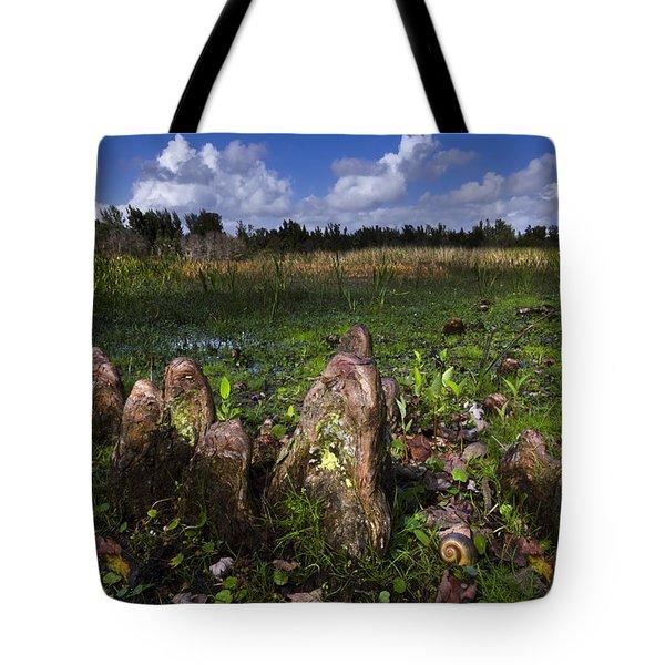 Garden In The Glades Tote Bag by Debra and Dave Vanderlaan