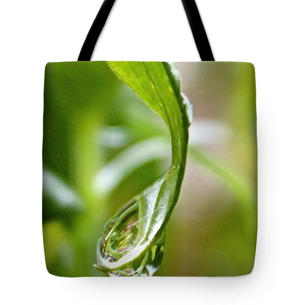Garden Reflections 3 Tote Bag by Kume Bryant